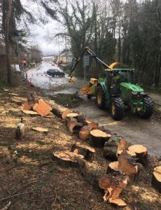 Land Clearing Specialists Preston