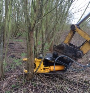 Tree Shear Merseyside