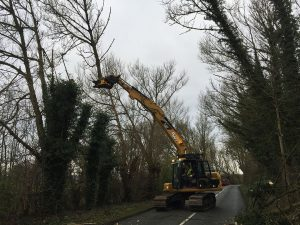 Tree Clearance Excavators
