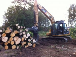 Land Clearing Specialist Delamere
