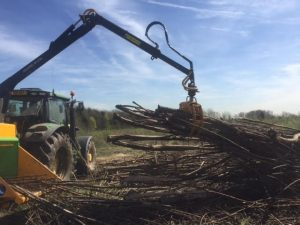 Tree Clearing Specialists Preston